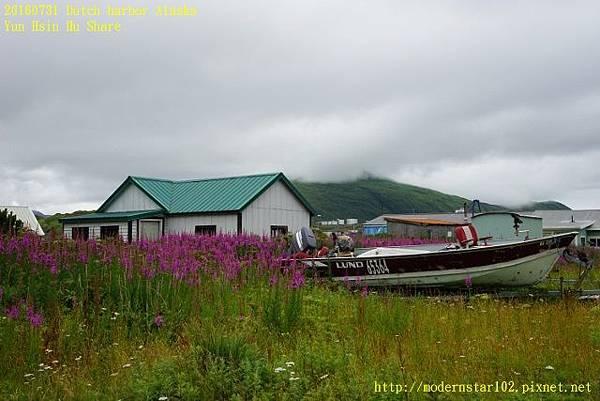20160731Dutch harbor AlaskaDSC02124 (640x427).jpg