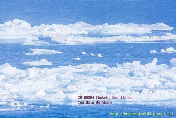 20160804Chukchi Sea polar bear894A9664-1 (640x427).jpg