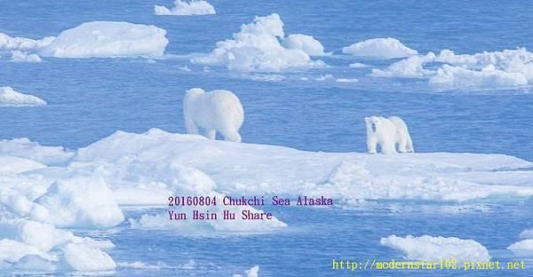 20160804Chukchi Sea polar bear3894A9592-1 (640x332).jpg