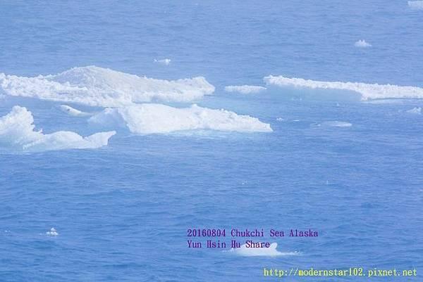 20160804Chukchi Sea polar bear894A0158-1 (640x427).jpg