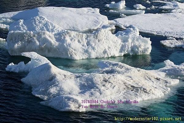 20160804Chukchi Sea polar bear894A0166 (640x427).jpg