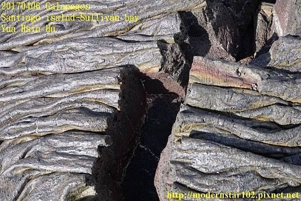 1060406 Santiago-Sullivan bayDSC06536 (640x427).jpg