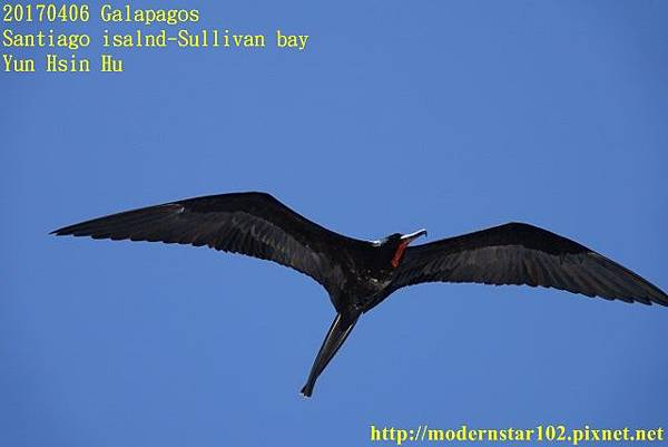 1060406 Santiago-Sullivan bayDSC06809 (640x427).jpg