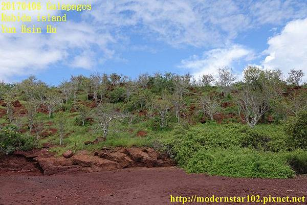 1060406 Rabida islandDSC06854 (640x427).jpg