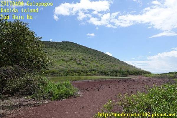 1060406 Rabida islandDSC06855 (640x427).jpg