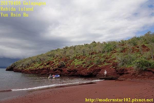 1060406 Rabida islandDSC06853 (640x427).jpg