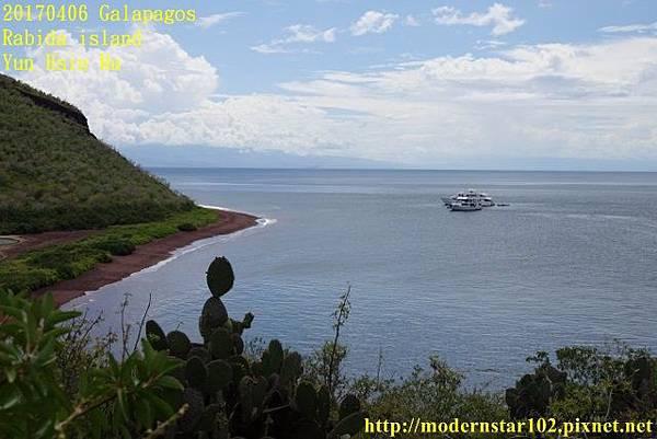 1060406 Rabida islandDSC06878 (640x427).jpg