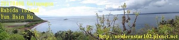 1060406 Rabida islandDSC06883 (640x145).jpg
