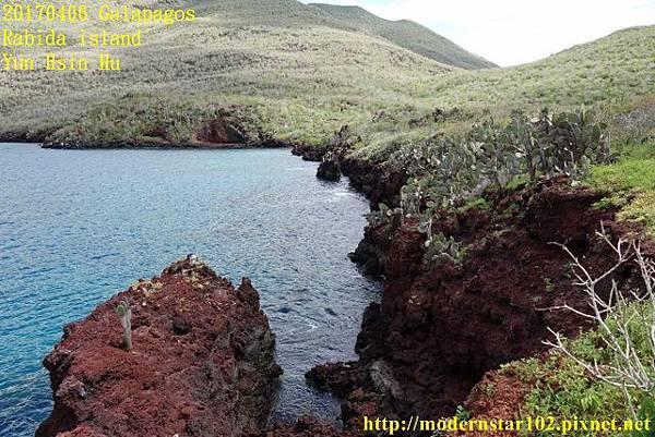 1060406 Rabida islandDSC06900 (640x427).jpg