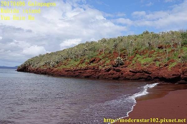 1060406 Rabida islandDSC07001 (640x427).jpg