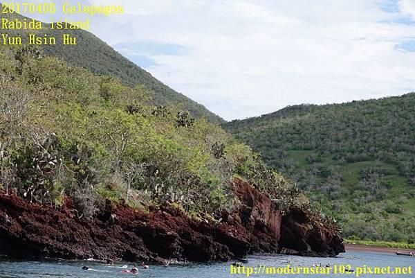 1060406 Rabida islandDSC07010 (640x427).jpg
