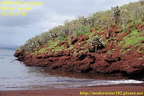 1060406 Rabida islandDSC06998 (640x427).jpg