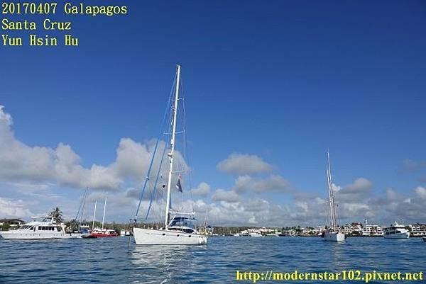 1060407 Santa CruzDSC07197 (640x427).jpg