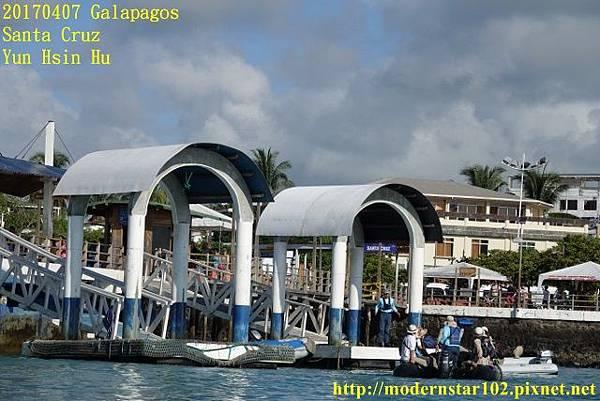 1060407 Santa CruzDSC07199 (640x427).jpg