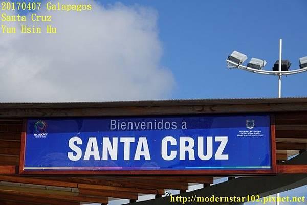 1060407 Santa CruzDSC07211 (640x427).jpg
