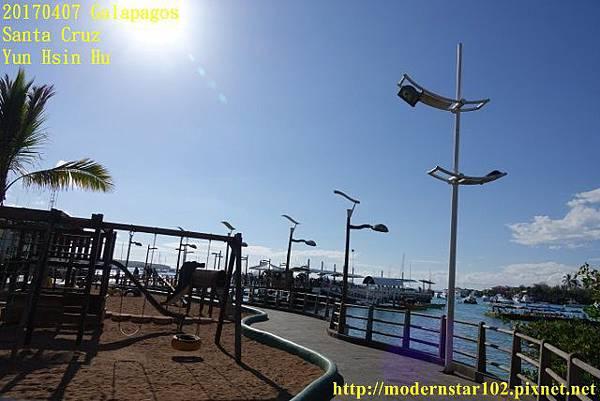 1060407 Santa CruzDSC07215 (640x427).jpg