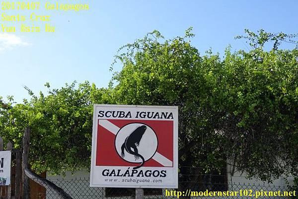1060407 Santa CruzDSC07241 (640x427).jpg