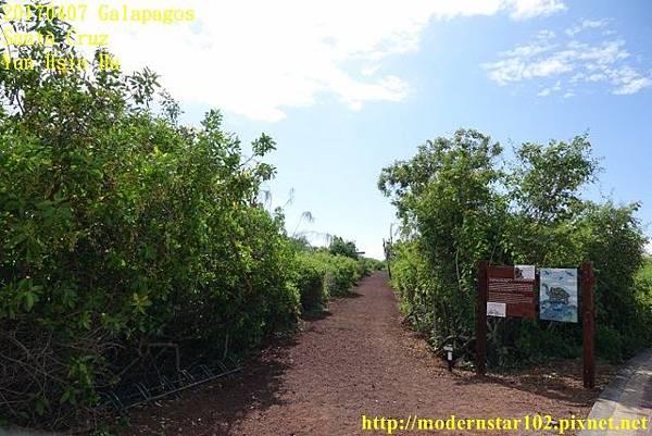 1060407 Santa CruzDSC07305 (640x427).jpg