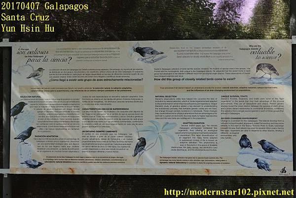 1060407 Santa CruzDSC07333 (640x427).jpg