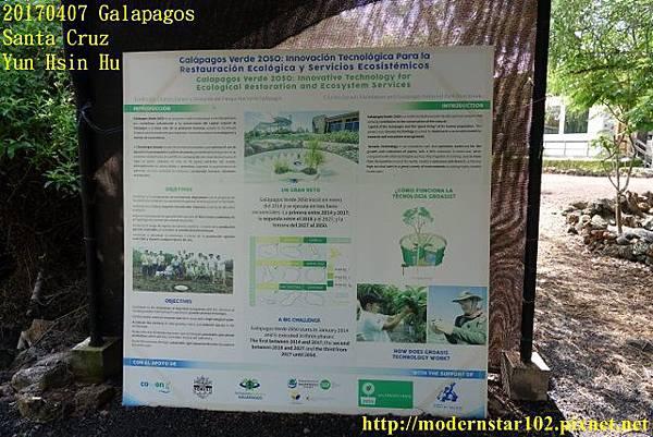 1060407 Santa CruzDSC07342 (640x427).jpg