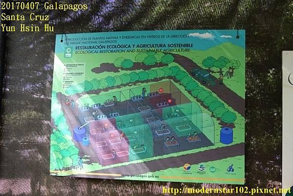 1060407 Santa CruzDSC07343 (640x427).jpg