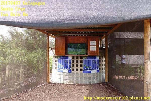 1060407 Santa CruzDSC07352 (640x427).jpg