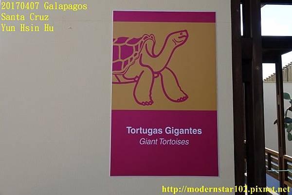 1060407 Santa CruzDSC07452 (640x427).jpg