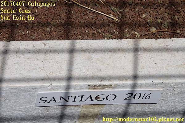 1060407 Santa CruzDSC07464 (640x427).jpg