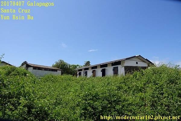 1060407 Santa CruzDSC07483 (640x427).jpg