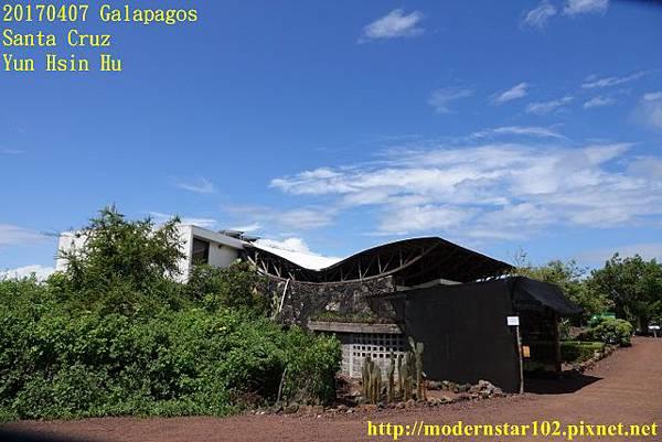 1060407 Santa CruzDSC07484 (640x427).jpg