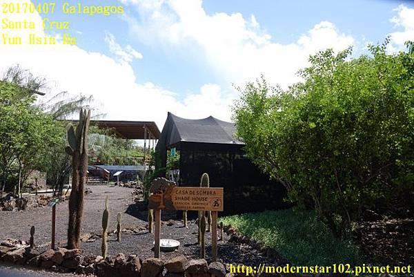 1060407 Santa CruzDSC07500 (640x427).jpg