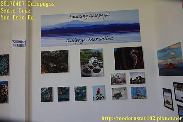 1060407 Santa CruzDSC07510 (640x427).jpg