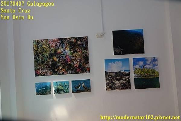 1060407 Santa CruzDSC07513 (640x427).jpg