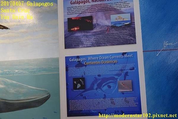 1060407 Santa CruzDSC07527 (640x427).jpg