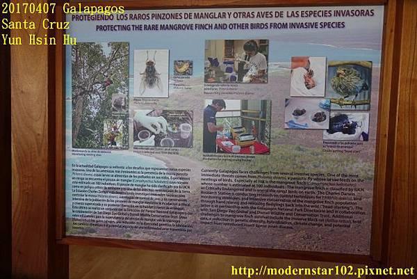 1060407 Santa CruzDSC07538 (640x427).jpg