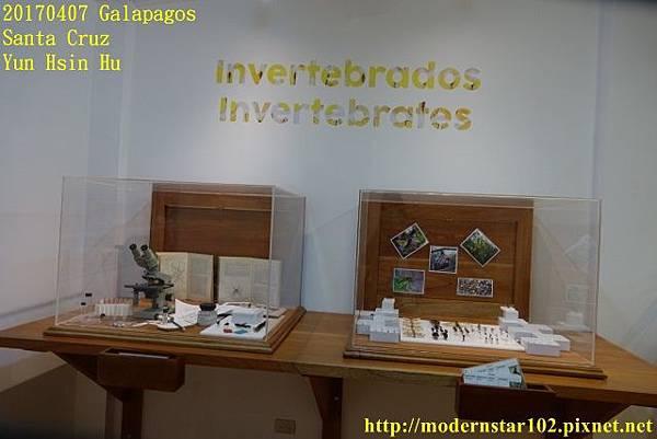 1060407 Santa CruzDSC07560 (640x427).jpg