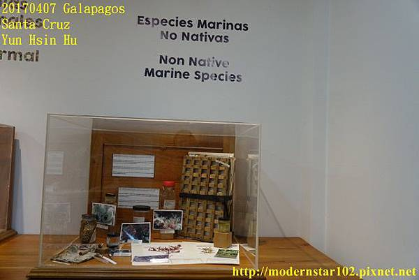 1060407 Santa CruzDSC07562 (640x427).jpg