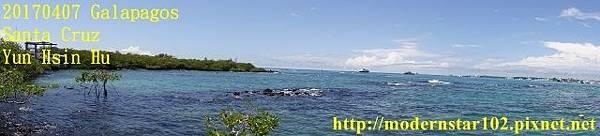 1060407 Santa CruzDSC07623 (640x145).jpg