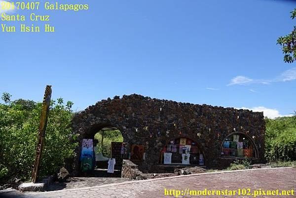 1060407 Santa CruzDSC07637 (640x427).jpg