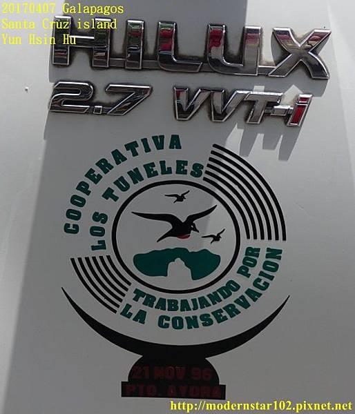 1060407 Santa Cruz islandDSC07806 (548x640).jpg