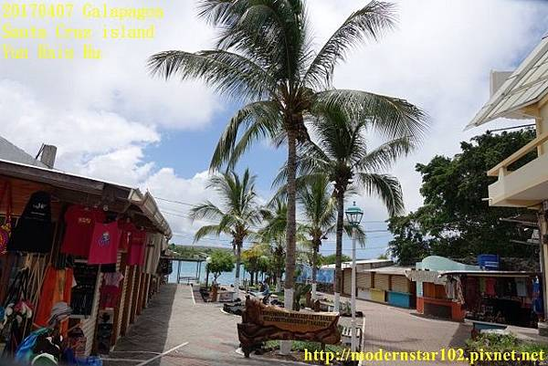 1060407 Santa Cruz islandDSC07828 (640x427).jpg