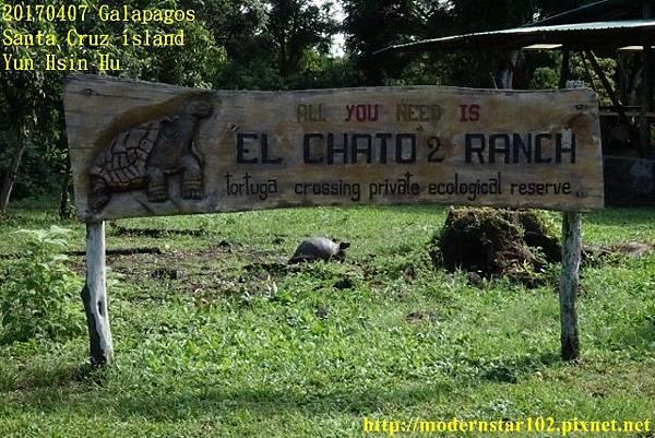 1060407 Santa Cruz islandDSC07890 (640x427).jpg