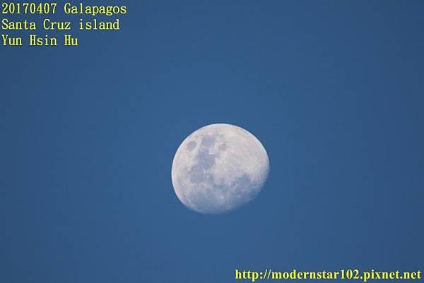 1060407 Santa Cruz island894A3171 (640x427).jpg