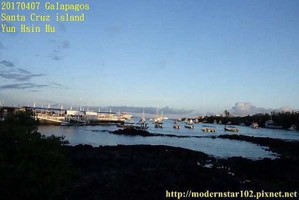 1060407 Santa Cruz islandDSC08418 (640x427).jpg