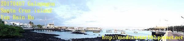 1060407 Santa Cruz islandDSC08425 (640x145).jpg