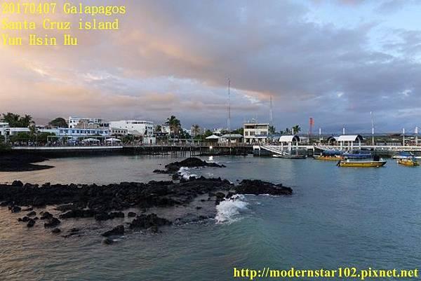 1060407 Santa Cruz islandDSC08457 (640x427).jpg