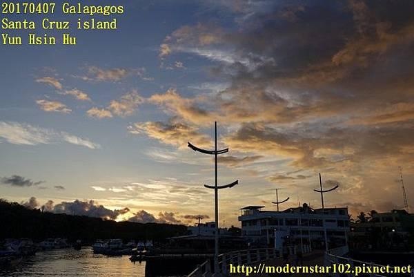 1060407 Santa Cruz islandDSC08454 (640x427).jpg