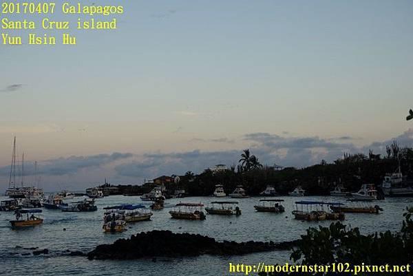 1060407 Santa Cruz islandDSC08462 (640x427).jpg
