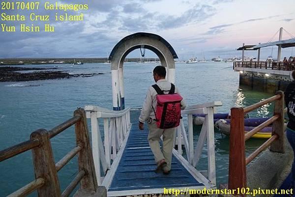 1060407 Santa Cruz islandDSC08482 (640x427).jpg