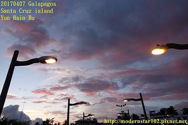 1060407 Santa Cruz islandDSC08479 (640x427).jpg